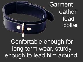 Leather lead bondage collar
