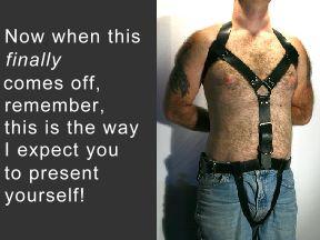 Posture restraint system